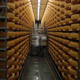 Fromagerie de Grandcour - Caves